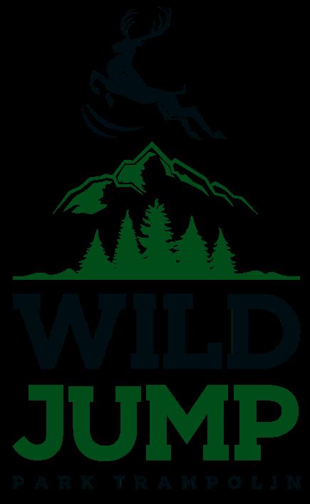 park trampolin jelenia góra